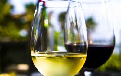 [:es]Conviértete en un experto en vinos sin alcohol[:]