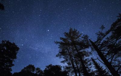 [:es]El verano es para mirar las estrellas[:]