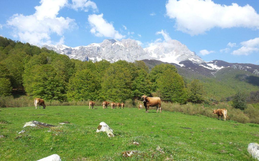 ¡Celebremos el Día Europeo de los Parques Naturales!
