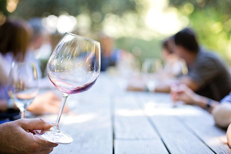 Cata de vino para novatos