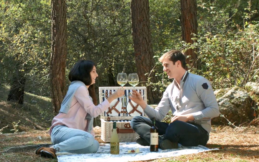 Primeros picnics de primavera con Win.0